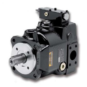 PAKER YB1-63/100 Piston Pump